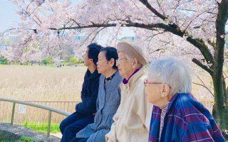 ゆさゆさと 大枝ゆるゆる 桜かな_村上鬼城